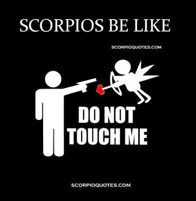 Best 25  Scorpio zodiac ideas on Pinterest   Scorpio, Scorpio ...