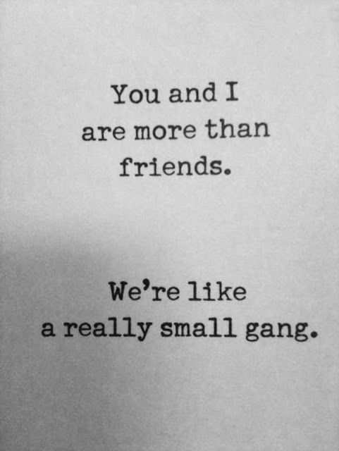 Photo Quotes About Friendship Inspiration Love Quotes For Him  More Than Friends Quotes Quote Friends