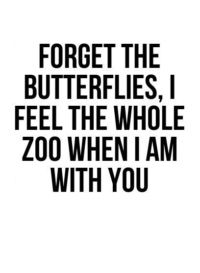 Funny Quotes Love Glamorous Quotes About Love  Love Quotes Forget The Butterflies I Feel