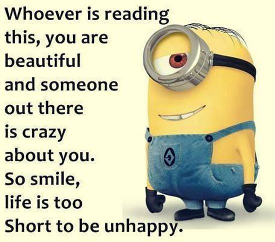 Best Funny Quotes Top 40 Minion Jokes Quotess