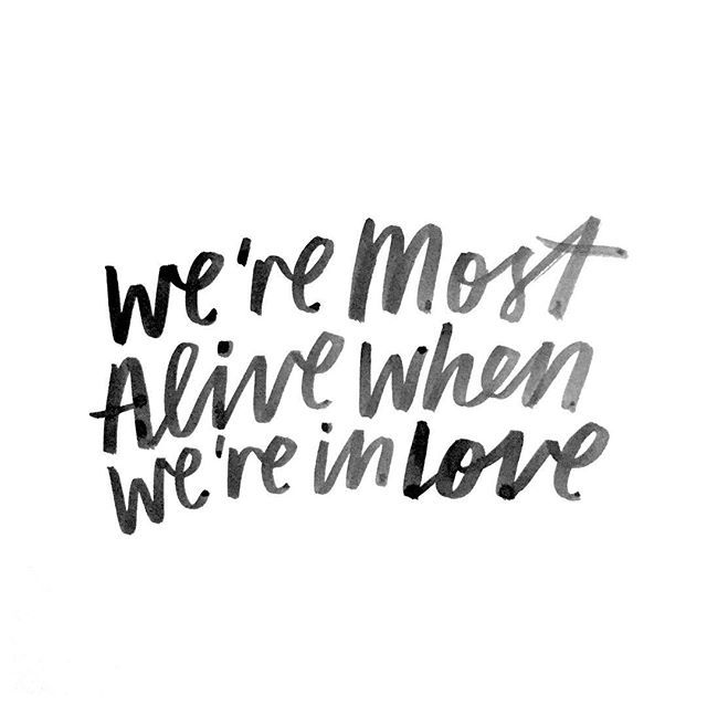 In Love Quotes Adorable Quotes About Love  We're Most Alive When We're In Love…  Quotess