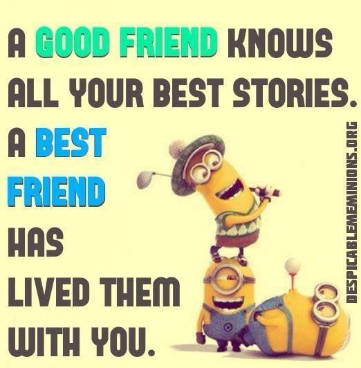 Funny Quotes About Friendship And Love Custom Best Funny Quotes  Top 30 Funny Minions Friendship Quotes