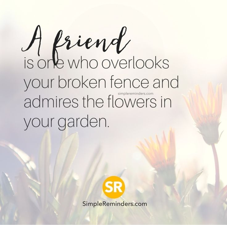 Fence Quotes Awesome Quotes About Strength  So Me Like Literally My Fence Is Broken