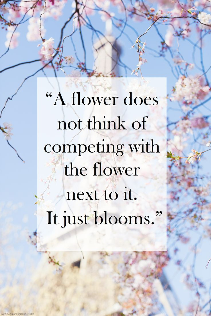 Quotes On Flowers And Love Work Quotes  …i Don't Knowi Think I've Seen Some Pretty