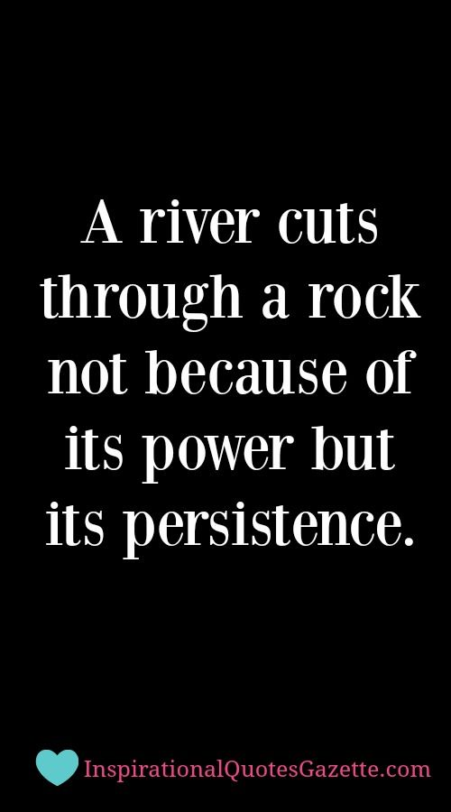 Motivational Quotes For Success In Life Fair Quotes About Success  Inspirational Quote About Life Persistence
