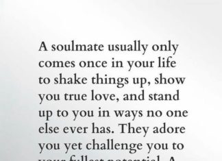Inspiration Love Quotes Magnificent Beautiful Wedding Quotes About Love  Leo Christopher Love Quotes
