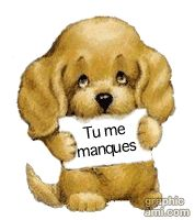 Quotes About Missing Chiot Portant Message Tu Me Manques