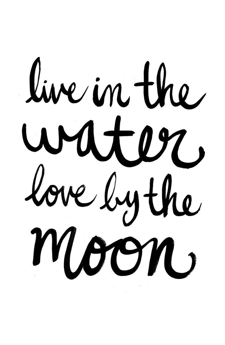 Life Quotes Love Quotes About Life  Live In The Water Lovethe Moon  Quotess