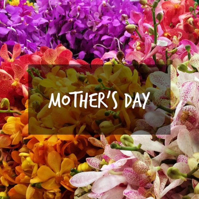 Mothers Day Quotes Hope You Had A Great Day Of Celebration In The
