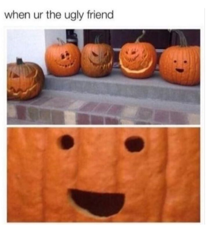 Best Funny Quotes : 13 Fall Memes To Help You Celebrate The ...