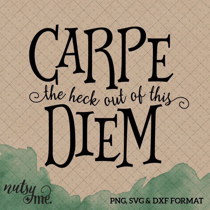 New Year\'s Quotes 2019 : Carpe Diem Quote - Funny SVG - New ...