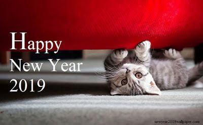 new year s quotes happy new year images good morning