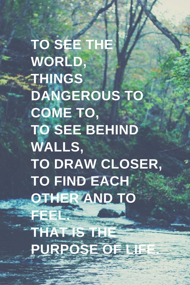 Quotes About Life The Secret Life Of Walter Mitty Quotess